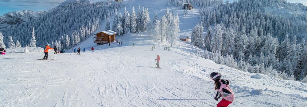recomandari partii schi, sodexo